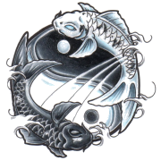 Yin and Yang Pisces